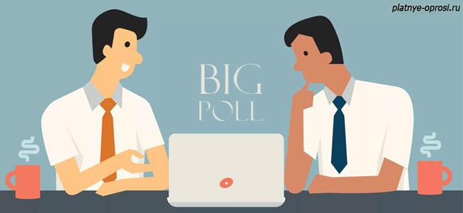 Bigpoll - сервис маркетинговых исследований