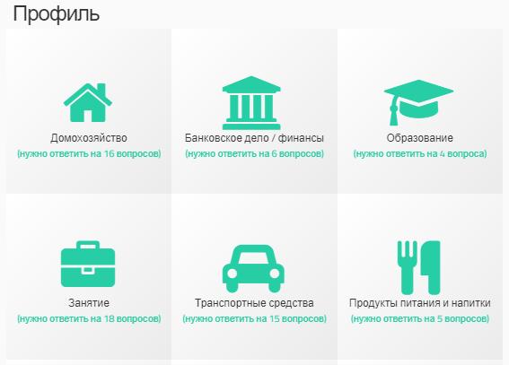 Указание информации о себе на сайте Surveys.su